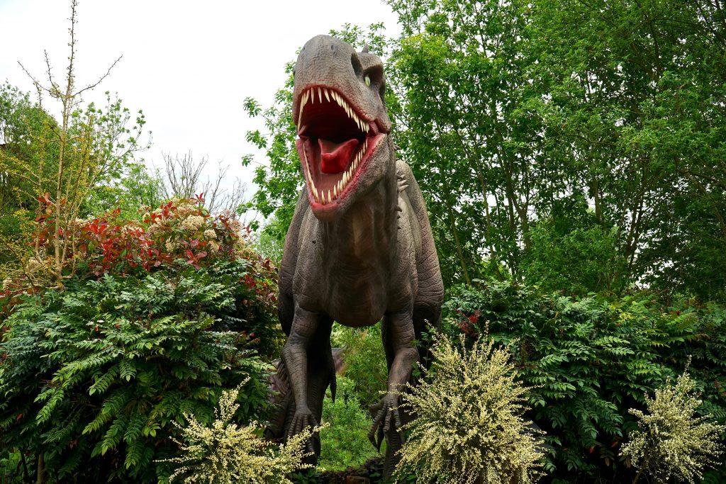 dinosaur-evergreen-figure-garden-410856